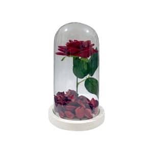 گل رز جاودان شیشه ای مدل STGB113