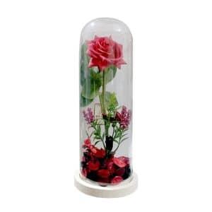 گل رز جاودان شیشه ای مدل STGB114