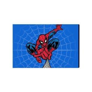 تابلو شاسی مرد عنکبوتی Spider Man مدل STA150