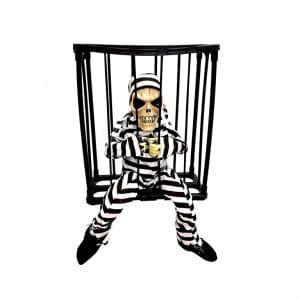اسکلت در قفس